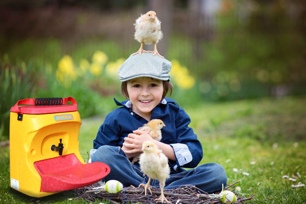 Kids must wash with soap and water when handling poultry