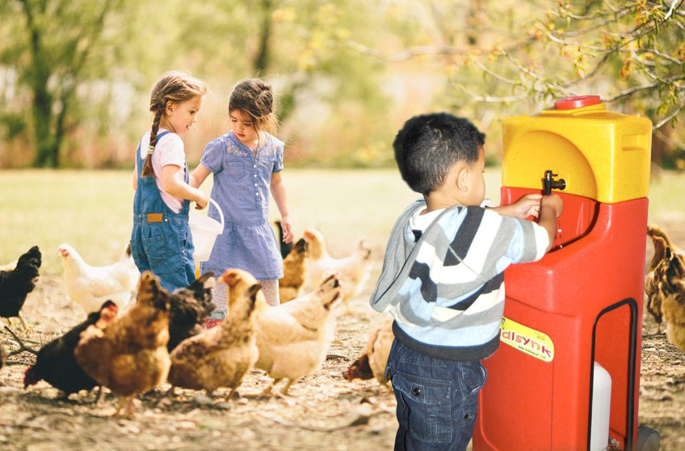 Regular hand-washing stations essential for petting zoos says report